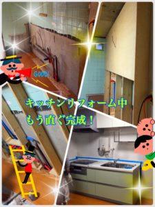 image1 (55)
